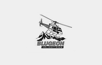 BLUEGEON_LOGO_GRIS